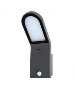 OSRAM Projecteur extérieur LED Endura Style  Détecteur de présence  12W équivalent a 56W  Gris anthracite