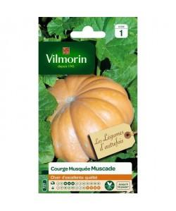 VILMORIN Courge Muscade de Provence