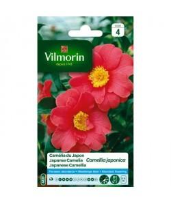 VILMORIN Sachet graines de Camélia du Japon CAMELLIA JAPONICA