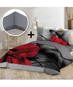 DOUCEUR D\'INTERIEUR Pack INES 100% coton  Parure de couette 220x240cm  drap housse 140x190cm