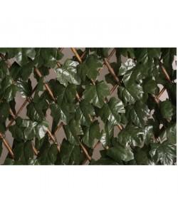 CATRAL Treillis extensible décoratif  1 x 2m