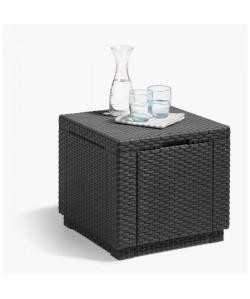 ALLIBERT JARDIN Table cube imitation rotin tressé avec rangement de 60 l  42x42x39 cm  Graphite